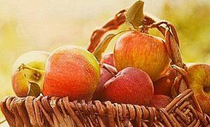 jabuke dijeta