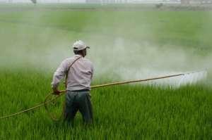 Zaprašivanje hrane otrovima