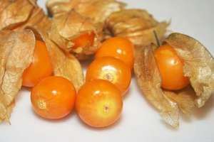 Zlatne bobice