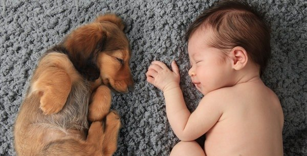 san i djeca